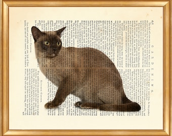 Burmese Cat DICTIONARY ART PRINT on Vintage Dictionary Page 10'' x 8'' from Antique Book