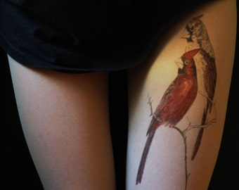 birds, birds tattoo,tattoo tights ,hand painted