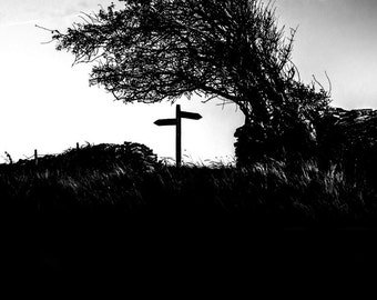 The Way Home. A black and white fine art photographic giclée print of a silhouetted hawthorn tree and signpost on a hill top.