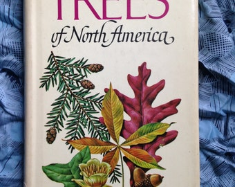 Trees of North America Vintage Field Guide