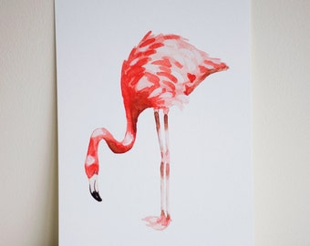Flamingo Signed Print