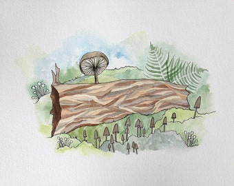 Forest Forage, West Coast, Watercolor, Pacific Northwest, Rainforest, Painting