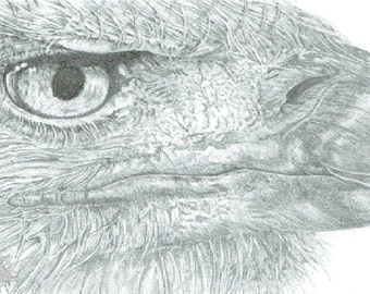 Winning Eye (Print) 5x7