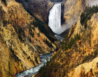 Yellowstone Falls from Artist Point,  Yellowstone National Park, Photo Print High Resolution