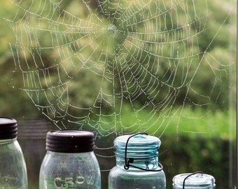 Spiderweb Photography, Nova Scotia, Vintage Mason Jars Photo, Nature Photography, Landscape Photography, Wall Art, Home Decor, Wall Art