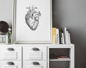 Vintage Heart, Antique Heart Diagram, black and white, Wall Art, Wall Decor, Heart Art, Medical Anatomy, Anatomy Art