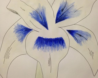 A4 Watercolour and Line Drawing Print - Blue Lily