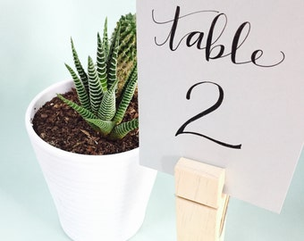 Modern Calligraphy Hand Lettered Table Number - Style 2
