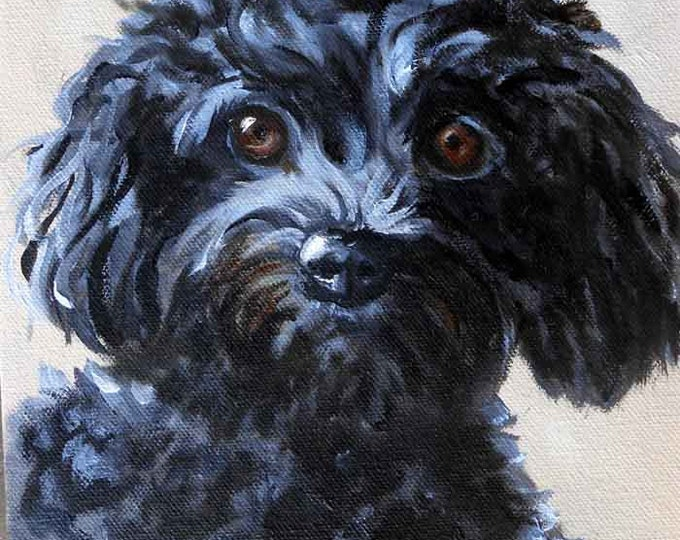 "Small Pet Portrait, Poodle or any breed, 5"" x 7"""