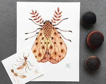Persimmon Moth and Golden Ants, miniature small watercolor paintings, set of two