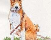 BASENJI LEASH Original Watercolor on ink print 11x14 Matted Ready to Frame