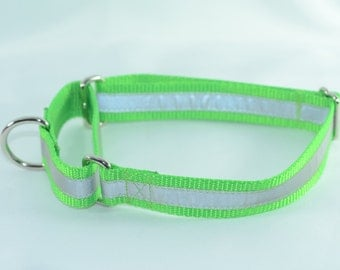 Reflective Lime Green Martingale Dog Collar -  Large
