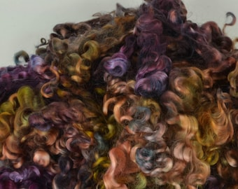 Wensleydale Long Wool Locks for Spinning and Felting Fiber- Colorway Reset