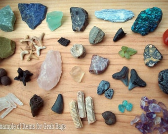 Fossil & Mineral Specimen Grab Bags - 10 Pieces