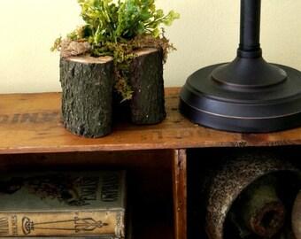 Faux Spring Maidenhair Fern Arrangement in Wood