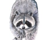 Raccoon print of watercolour painting, 5 by 7 size, R8716, Raccoon watercolor painting, woodland animal painting, raccoon painting