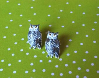 Owl Earrings -- Owl Studs, Graphic Owls, Realistic Owl Earrings