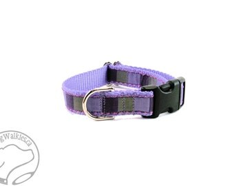 """Purple Squared Dog Collar - 3/4"""" (19mm) Wide - Choice of size & style - Quick Release Buckle or Martingale Dog Collars"""