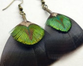 Feather Dangle Earrings, green, bronze and gold feather earrings, peacock and turkey feather jewellery for her