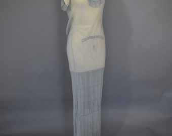30s Pale Blue Silk Chiffon Negligee Gown