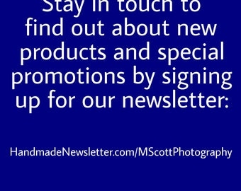 Discount Sign Up For my MScott Photography Newsletter and receive a 15% discount