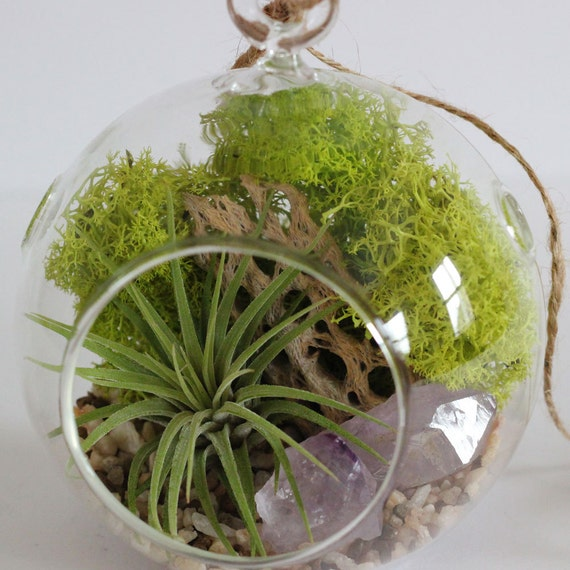 Air Plant Terrarium Kit Amethyst Crystal Point with Natural Pebbles || Small Round Hanging
