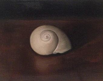 "Still life painting: Seashell 6x4"", oil painting"