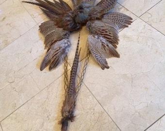 SALE-Pharoh/Egyptian/Roman/King Pharoh Fan//Decor taxidermy hanging pheasant fan