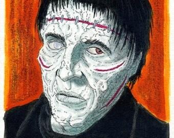 The Frankenstein Monster - Christopher Lee