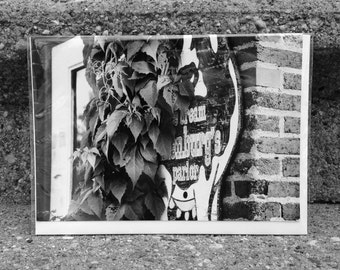 nature photography card ice cream sign vines black and white