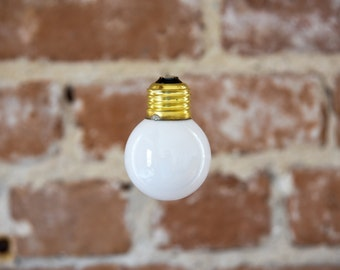 Our Standard Modern Style Bulb Used in Photos