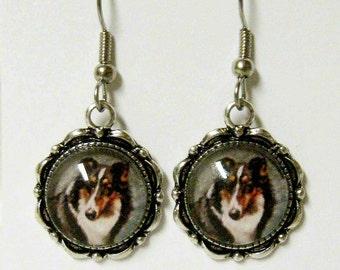 Collie earrings - DAP07-072
