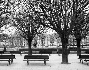 Paris black and white photography, Paris park, benches, Paris photography, black and white photo, bare trees, Paris decor, fine art print