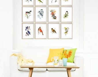 bird wall art, bird decor, gallery wall, bird illustration, bird prints, bird art set, vintage bird prints, antique bird prints, birds 8x10