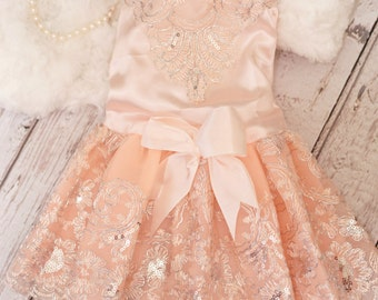 Soft Peach Pink Silver Embroidered Dog Dress with Tulle Skirt