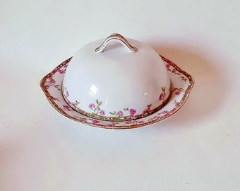 Antique China Floral China Porcelain Antique Serving China Oscar & Edgar Gutherz Round Floral Covered Butter Dish Antique German China Bowl