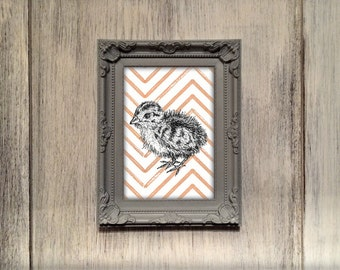 Quail Chick illustration print, quail chick nursery decor, blue green orange pink quail present, baby quail gift, quail art UK