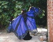 Butterfly blue wings cape Monarch cloak scarf costume adult fairy chiffon belly dance