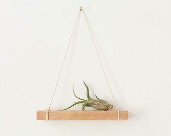 Wooden Plant Hanger with Airplant - modern plant object sculpture - minimal design - Home Decor Deko