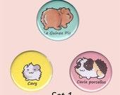 Guinea Pig Badge Set - guinea pig button, cavy button, guinea pig accessory, guinea pig illustrations, kawaii badges