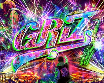 Roller Coaster of Funk - GRIZ inspired poster