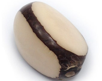 Tagua Nut, nature, 40mm, three sides, 1 piece, Anh