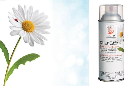 Clear Life Flower Sealer Clear Spray Flower Spray Clear