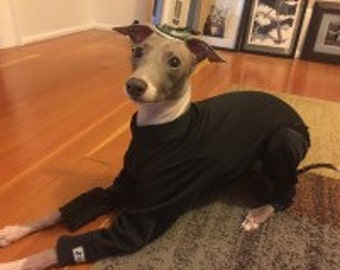 Sun Screen 50 SPF Summer Bodysuits for Italian Greyhounds and other small pups