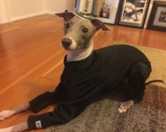 50 SPF Summer Bodysuits for Italian Greyhounds and other small pups