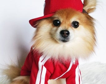 Red stripe dog jersey, xs-4xl, dog clothes, puppy jacket, dogs hoodies, dog hoodie, pet sports wear, small dogs jackets, dog winter clothes