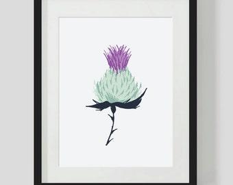 THISTLE ILLUSTRATION. Scottish art, HOME decor Scottish design, Scottish thistle hand drawing, unusual scottish gift, office decor thistle