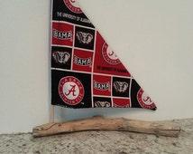 Collegiate Sailboats, Alabama, Georgia, Auburn, Tennessee, Florida