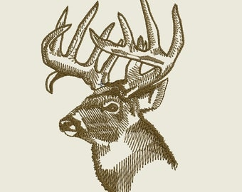 Whitetail Buck Embroidery Designs