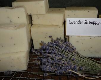 February Soap Box/Lavender & Poppy Seed